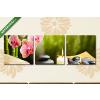 Képáruház.hu Lávaköves masszázs kellékei(125x40 cm, B01 Többrészes Vászonkép)