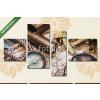 Képáruház.hu Premium Kollekció: vintage marine still life(125x70 cm, S02 Többrészes Vászonkép)