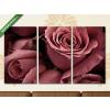 Képáruház.hu Rózsa(125x70 cm, L01 Többrészes Vászonkép)