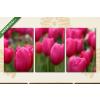 Képáruház.hu Rózsaszín tulipánok(125x60 cm, L02 Többrészes Vászonkép)