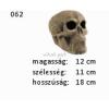 Kerámia M062 koponya nagy