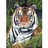 Kifestő készlet vászonra, akrilfestékkel, ecsettel, gyerekeknek 8 éves kortól - 23x30 cm - Tigris a sűrűben