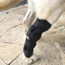 Légáteresztő térdvédő kutyáknak, M méret kutyafelszerelés