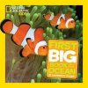Little Kids First Big Book of the Ocean – Catherine D Hughes