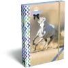 LizzyCard Füzetbox A/5 GEO Horse One 17268206