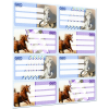 LizzyCard Füzetcímke íves GEO Horse Mix 17016405
