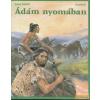 Madách Ádám nyomában