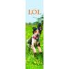 Mapcards.net s.r.o. Mapcards 3D könyvjelző (21x5,5 cm) LOL, kutyus