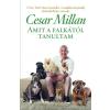 Millan, Cesar MILLAN, CESAR - AMIT A FALKÁTÓL TANULTAM