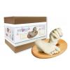 MyBBPrint Babakéz és lábszobor készítő készlet (vödrös)