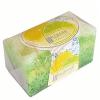 NATURE of Agiva Citrus Fresh Szappanos fürdőszivacs 55 g