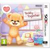 Nintendo 3DS Teddy Together
