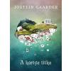 Noran Libro Jostein Gaarder: A kártya titka
