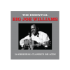 NOT NOW Big Joe Williams - Essential (Cd)