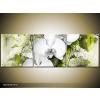 Odea.hu Rajz a hófehér orchideáról vászonkép 90x60 3 részes