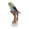 Papagáj - klasszikus nagymama nipp