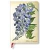Paperblanks Paperblanks butikkönyv - Blooming Wisteria, MINI, vonalas