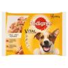 Pedigree Vital Protection teljes értékű állateledel felnőtt kutyák számára aszpikban 4 x 100 g