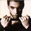 Prince The Hits2 (CD)
