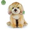 Rappa Eco-friendly Labrador, 27 cm