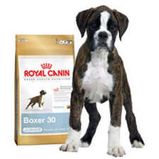 Royal Canin Bhn Boxer junior 12Kg kutyaeledel