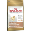 Royal Canin Caini Royal Canin Labrador Retriever Junior kutyaeledel, 3Kg (100004)