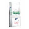 Royal Canin Dental Special Small Dog Dry DSD 25 2 kg