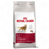 Royal Canin Fit 32 - 2 kg