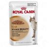 Royal Canin Intense Beauty szószban - 12 x 85 g