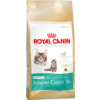 Royal Canin Kitten Maine Coon 36  2kg