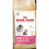 Royal Canin Persian Kitten macskatáp 2x10kg Akció!