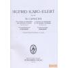 Steingräber 30 Capricen Op. 107