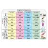 Stiefel English for Beginners 1. (Pronouns) DUO + 10 db ajándék tanulói munkalap