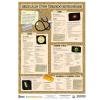 Stiefel Eurocart Kft. Nemi betegségek 2.-3. (vírusok) / (bakteriális fertőzések)  tanulói munkalap
