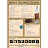 Stiefel Nemi betegségek 1. (általános ismertető) - fali oktatótabló