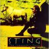 Sting STING - Ten Summoner's Tales CD