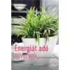 Sziget Könyvkiadó Irmgard Brottrager: Energiát adó növények az otthonunkban