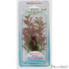 Tetra műnövény (M) Red Ludwigia (2)