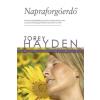 Torey Hayden HAYDEN, TOREY - NAPRAFORGÓERDÕ