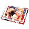 Trefl : Fagyizó kiskutyák 500 darabos puzzle