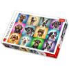 Trefl Trefl: vicces kutyák 1000 darabos puzzle