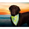 Trixie Biztonsági kendő kutyának s–m 29–42cm