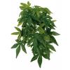 Trixie Terráriumi műnövény Abutilon 50cm trx76237