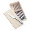 WMF Steak kés Ajándékcsomag