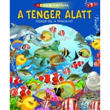 Zseblámpával - A tenger alatt gyermek- és ifjúsági könyv